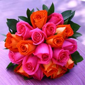 """Photo Rosa """"Pink Paradise"""" - Rose by Tina & Horst Herzig ...   Orange And Pink Roses"""