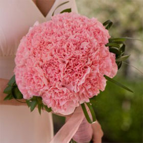 Bridal Bouquet Pink Carnations