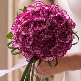 Bridal Bouquet Purple Carnations