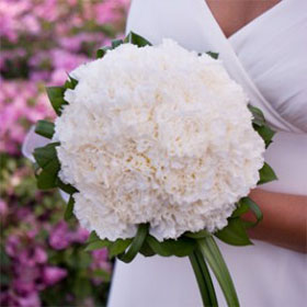 Bridal Bouquet White Carnations