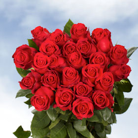 400 Stunning Red Roses – Next Day Delivery