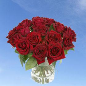 8 Dozen Red Roses