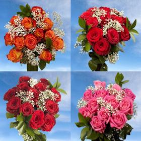 16 Dozen Roses Best Price 8 Dozen Red Roses & 8 Dozen Assorted Color Roses 192 & Fillers