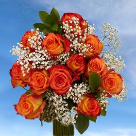 6 Dozen Assorted Color Elegant Roses Long 72 & Fillers