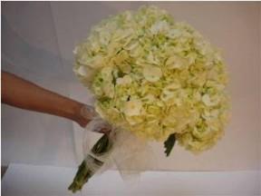 Bridal Bouquet Hydrangea 4 Stems