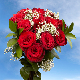 6 Long Stem  Dozen Red Elegant Roses  72 Roses & Fillers She Will Love Them