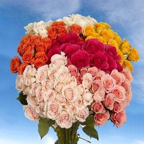 100 Assorted Color Spray Roses with 360 Blooms