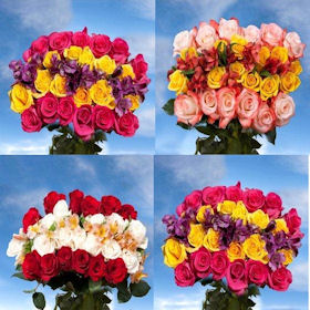 Top Secret 6 Bouquets Assorted 24 Roses Two Colors 4 Global Rose Choice Fillers