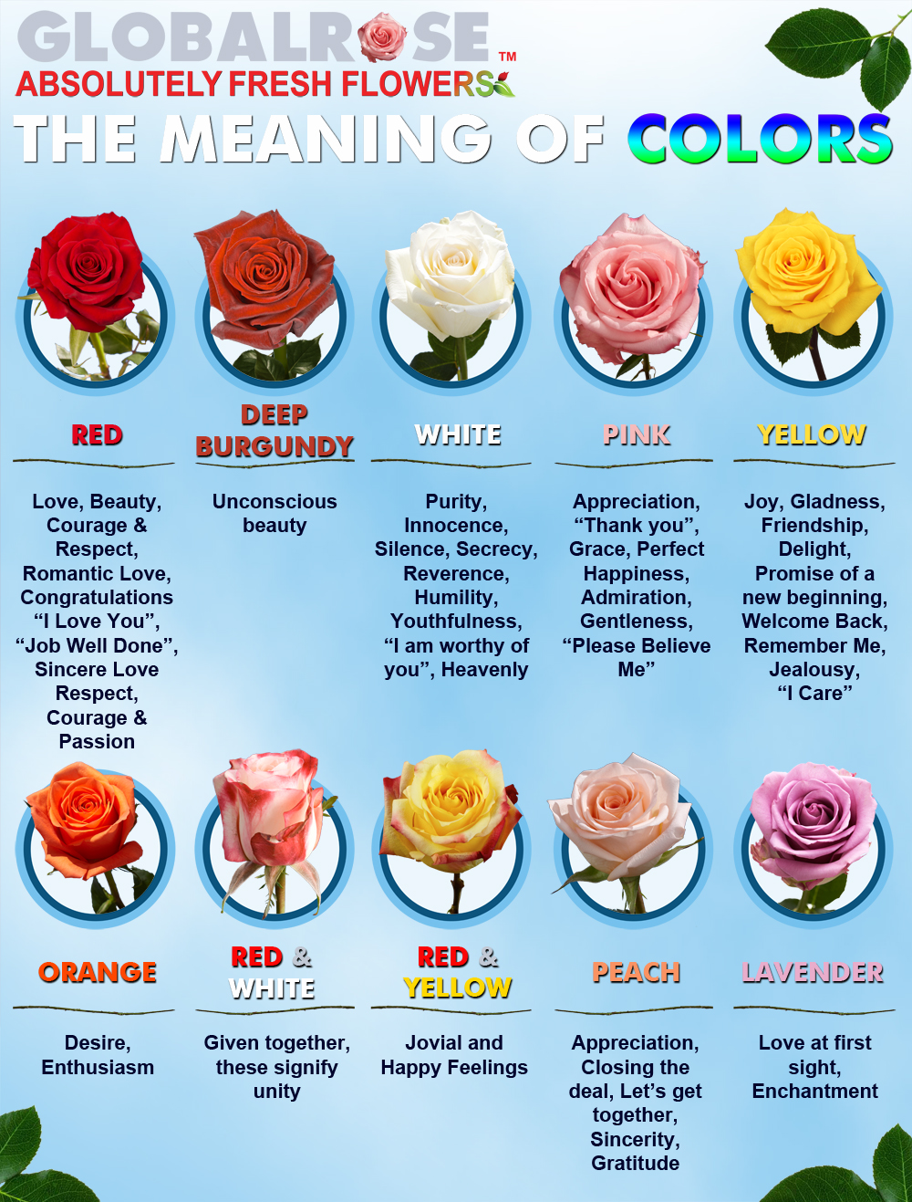 Flower color meanings thin blog graphic facebook 02 nvjuhfo Choice Image